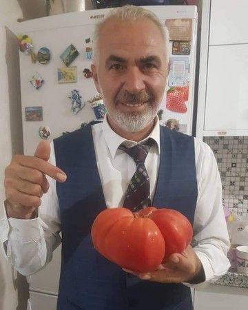 Bursa'nın İnegöl ilçesi Halil İnalcık Sosyal Bilimler Lisesi Müdürü Cavit Yakşi, hobi bahçesine ektiği domatesi görünce şaşırdı. Domatesi tartan Yakşi