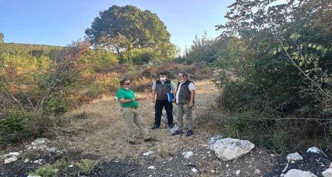 Harekete geçen Bursa Orman Bölge Müdürlüğü, dünyada ihtiyacının yüzde 90'ını Türkiye'nin karşıladığı coğrafi işaret tescilli 'Türk Defnesi'nin kalites