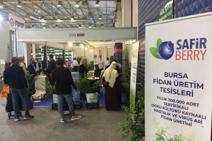 Bursa'da ve Türkiye'de maviyemiş üreticiliği alanında faaliyet gösteren Safir Berry A.Ş, Bursa 18. Uluslararası Tarım, Tohumculuk, Fidancılık ve Süt E