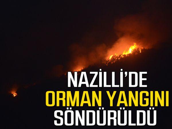 Nazilli'de orman yangını söndürüldü