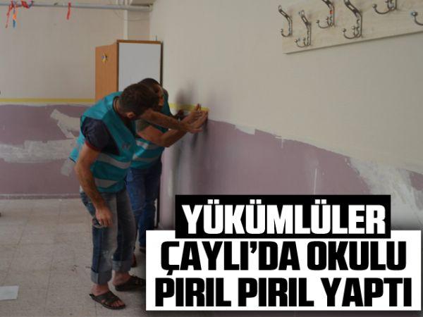 Yükümlüler, Çaylı'da okulu pırıl pırıl yaptı