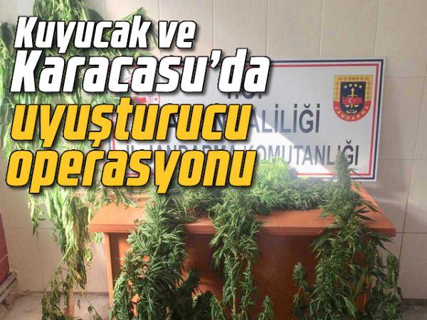 Kuyucak ve Karacasu'da uyuşturucu operasyonu