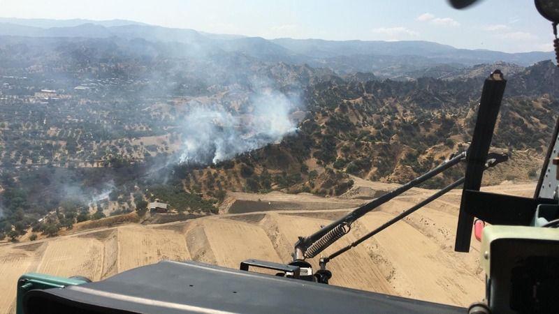 Nazilli'de orman yangını