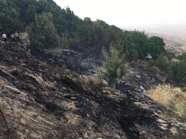 Bozdoğan'daki yangın büyümeden söndürüldü