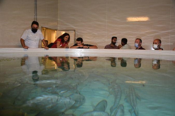Su ürünleri yetiştiriciliği için teknik gezi düzenlediler