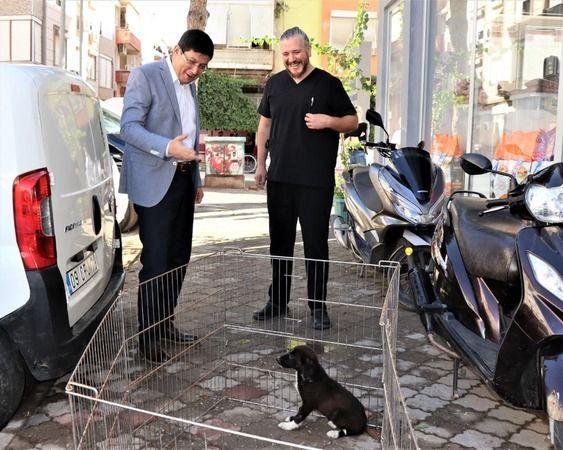 Başkan Özcan'dan fedakar veteriner hekimlere teşekkür
