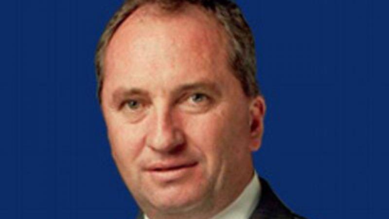 Avustralya Başbakan Yardımcısı'na 'Maske' Cezası