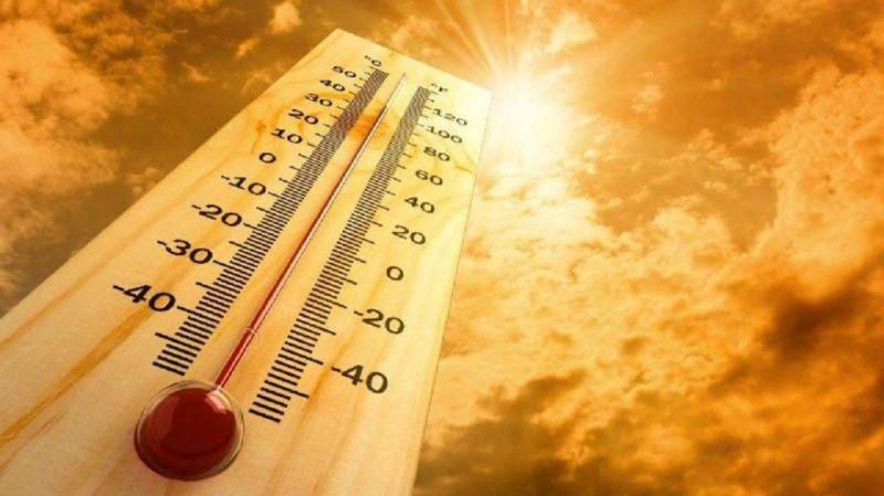 Güney Doğu Anadolu Bölgesi'nde Rekor Sıcaklık: 50 Dereceye Yaklaştı!