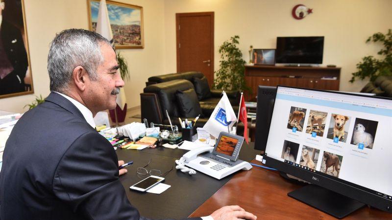 Ankara Büyükşehir Belediyesinden Hayvan Dostu Yeni Uygulama: E-Pati