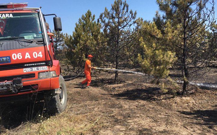 Ankara Atatürk Orman Çiftliği'ndeki yangın kontrol altına alındı
