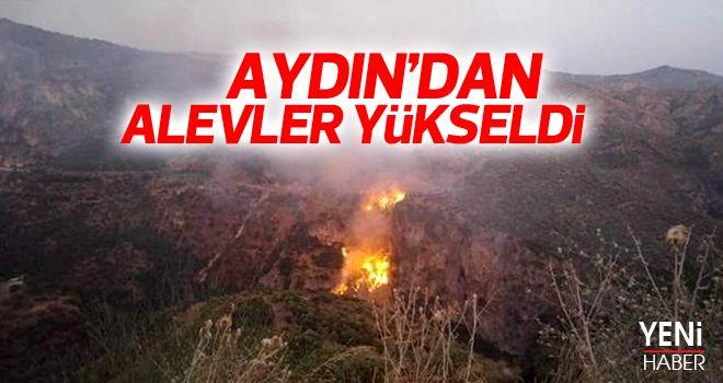 Aydın'da 3 noktada yangın