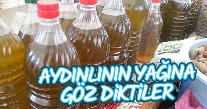 Aydın'da zeytinyağı hırsızlığı
