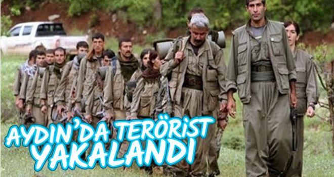 Aydın'da terör örgütü üyesi yakalandı