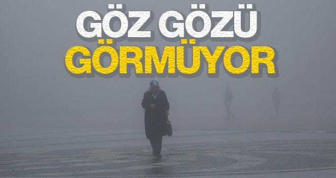 Manisa'da yoğun sis yaşamı olumsuz etkiliyor.