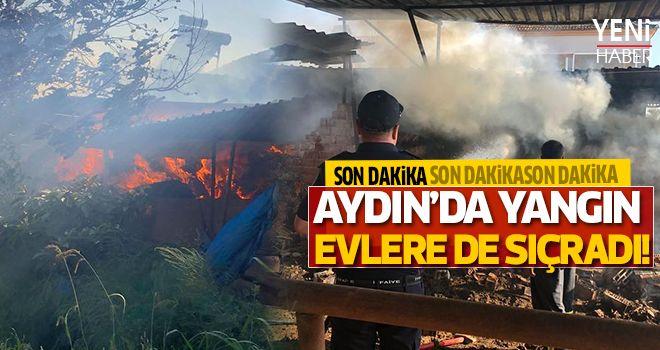 Korkutan yangın evlere sıçradı