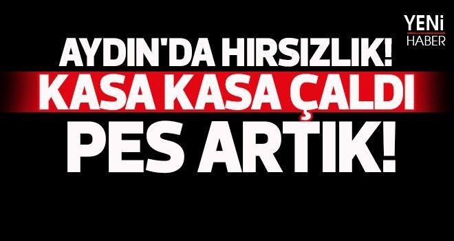 Aydın'da hırsızlık!