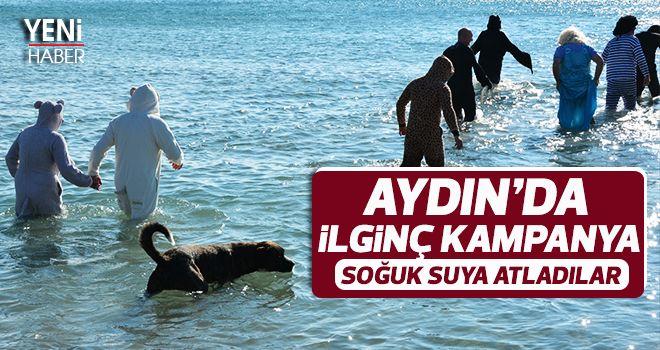 Aydın'da ilginç kampanya