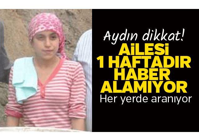 Aydın'da kayıp