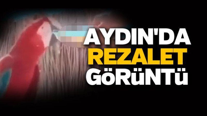 Aydın'da rezalet görüntü