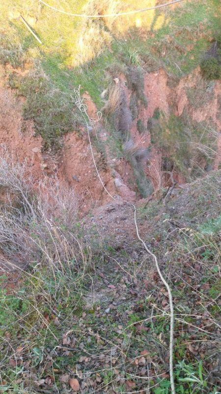 Aydın'da dağda mahsur kalan keçiyi itfaiye kurtardı