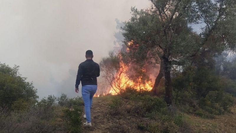 Aydın'da 10 dönümlük ağaçlık alan yangında zarar gördü