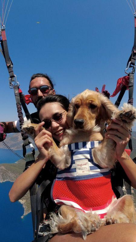 """Ölüdeniz'in eşsiz manzarasında köpeği """"Yager"""" ile yamaç paraşütü yaptı"""