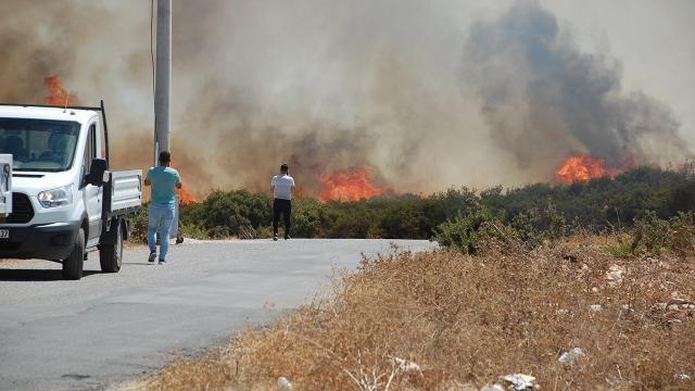 Aydın'da çıkan yangınla ilgili 3 kişi gözaltına alındı