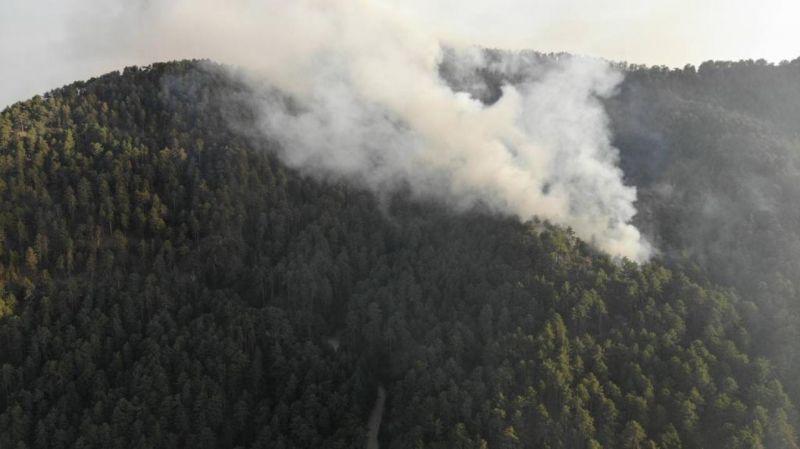 Aydın'daki orman yangınına müdahale sürüyor