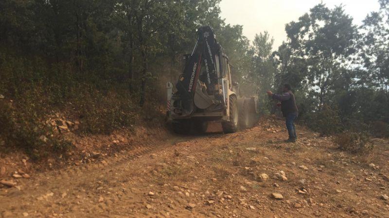 Aydın'daki orman yangınına havadan ve karadan müdahale ediliyor