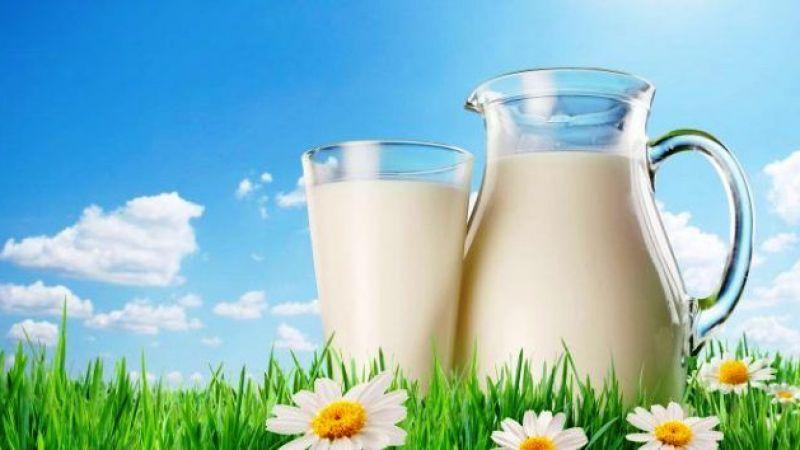 Yılın ilk yarısında içme sütü üretimi yüzde 5,6 azaldı