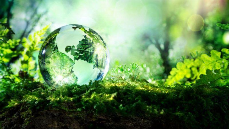 Evimizde oluşan çöpleri ayrıştırarak çevreyi korumaya başlayabiliriz