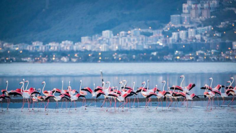 İzmir'de arıtması olmayan yer kalmayacak