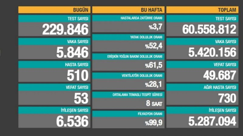 Türkiye'nin 29 Haziran 2021 koronavirüs tablosu