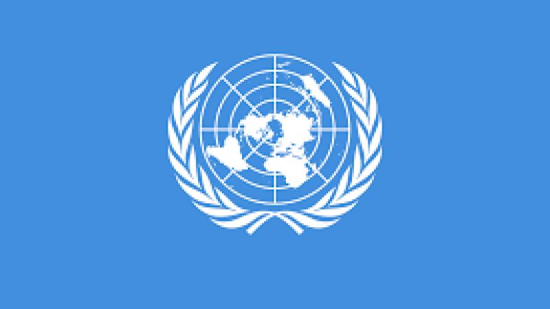 BM, Türkiye'den Suriye'ye yardımın 1 yıl uzatılmasını onayladı