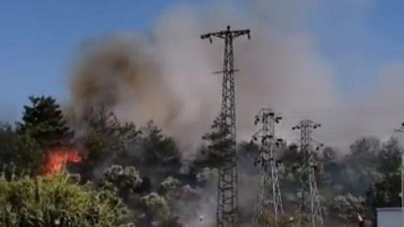İzmir'de orman yangını korkuttu