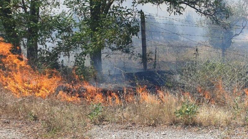 Orman yangınları kader değil
