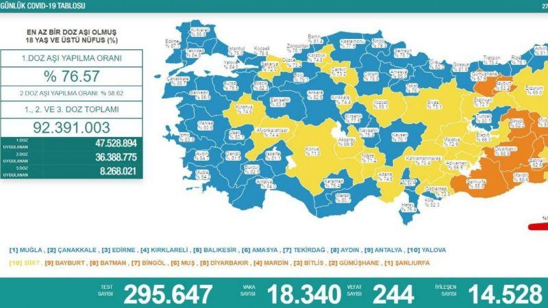 Koronavirüs Raporu: 244 vefat var