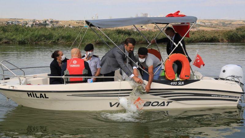 Mogan Gölü'ne 100 bin sazan bırakıldı