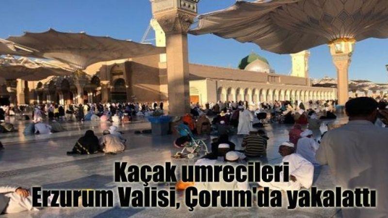 Kaçak umrecileri Erzurum Valisi, Çorum'da yakalattı