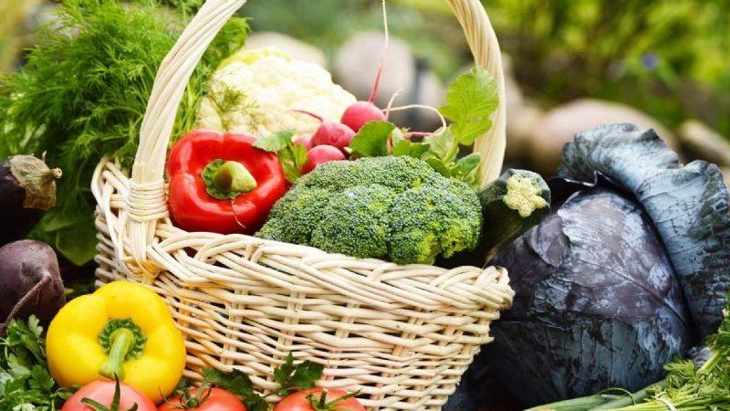 Türkiye, organik tarımda dünya 6'ıncısı