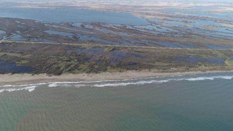 Karadeniz'deki tehlike... 'Geri dönüşsüz bir noktaya gidebiliriz'
