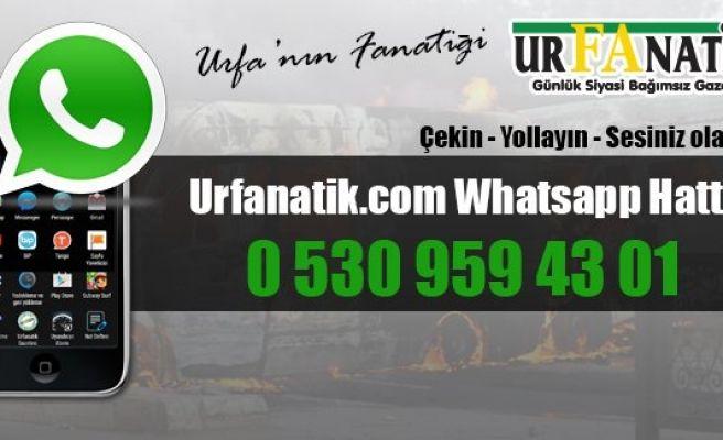 Urfanatik.com Whatsapp hattı...