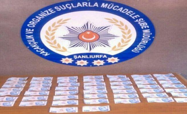 Urfa'da sahta para operasyonu,3 gözaltı