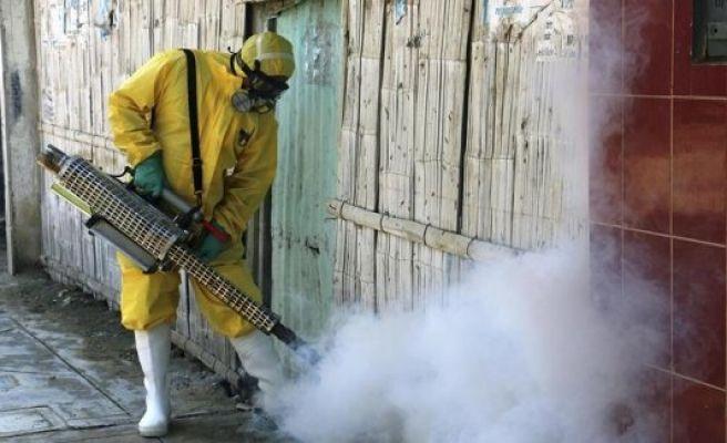Zika virus a global emergency, says UN health body
