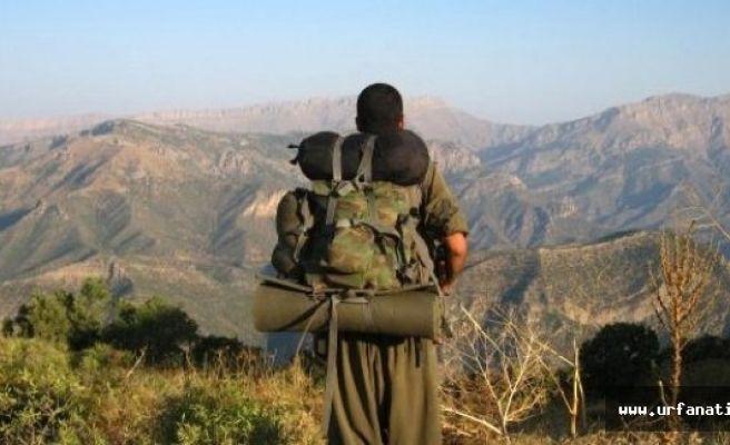 PKK GAP-Ruha sorumlusu öldürüldü