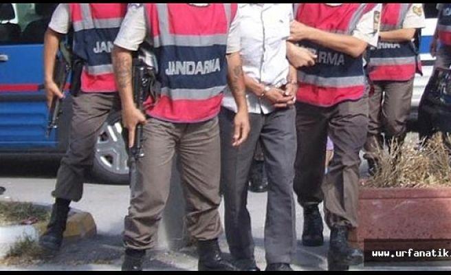 Urfa'da, Jandarmadan dev operasyon 79 gözaltı