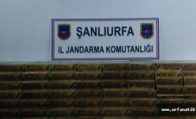 Şanlıurfa'da Jandarmadan kaçak sigara operasyonu