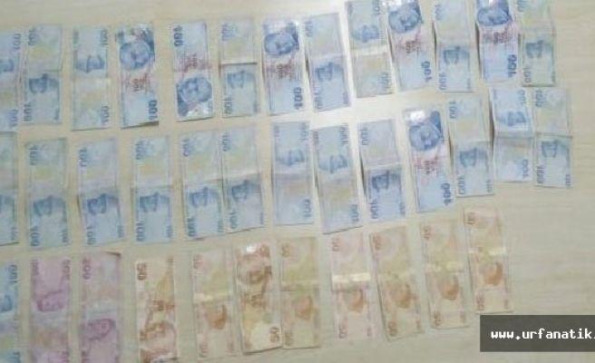 Urfa'da 29 hırsızlığa 11 tutuklama