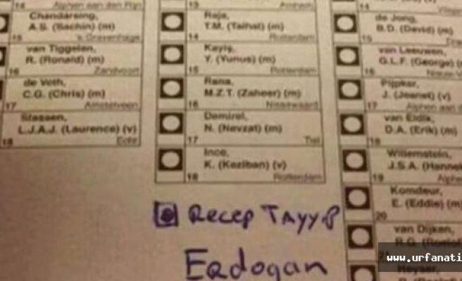 Hollanda'da 'Erdoğan' sürprizi! Oy pusulasında bakın ne çıktı