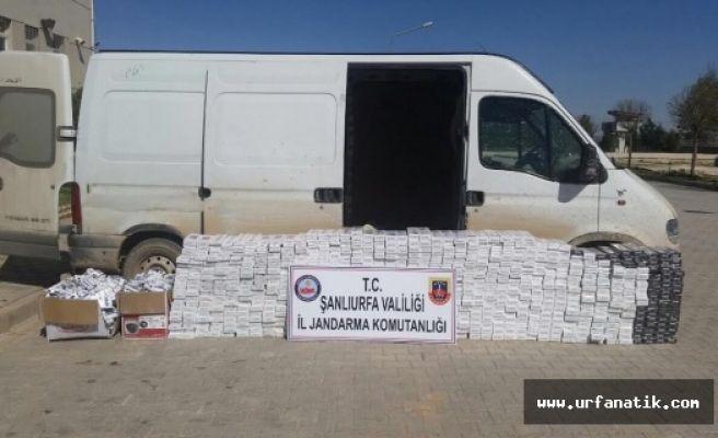 Urfa'da 19 Bin 330 paket kaçak sigara yakalandı